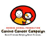 caninecancercampaign